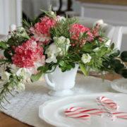 corso giardinaggio fiori Natale Ciavattini garden Ancona