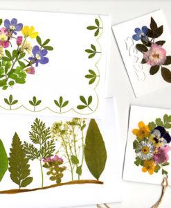 Corso creativo adulti oshibana ciavattini garden