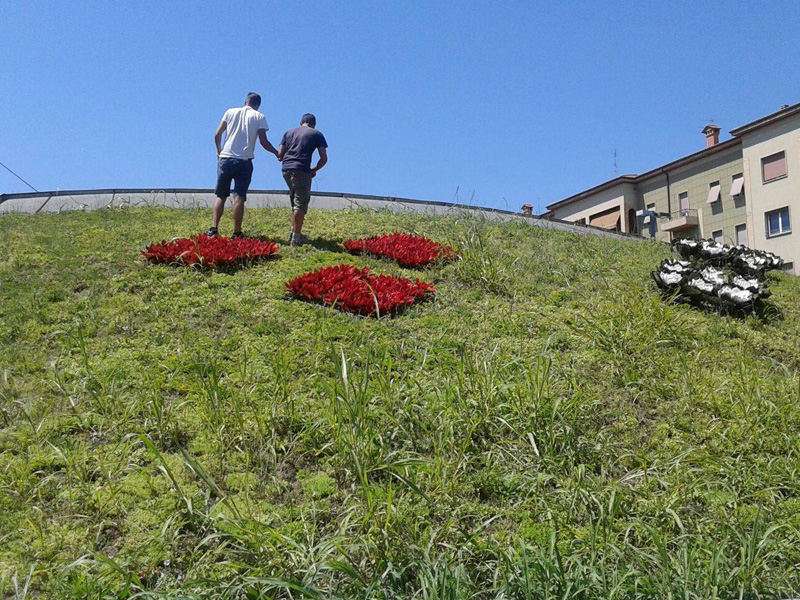 gardening Ciavattini Garden