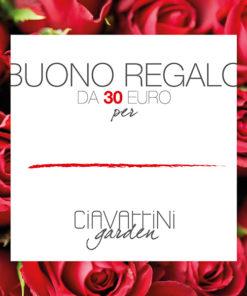 Buono regalo Ciavattini Garden Ancona