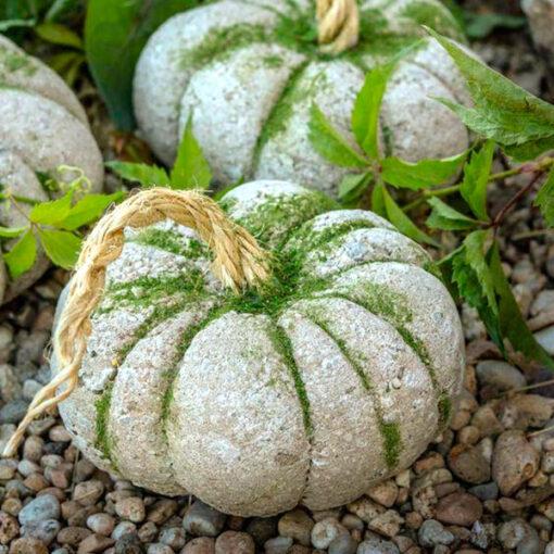 corso creativo zucche Ciavattini garden